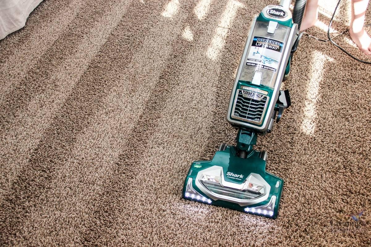 Cara Rawat Karpet